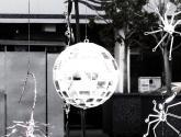 bola de espejos con alacrán y arañas