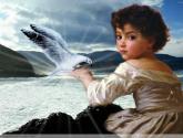 el hijo del mar y la gaviota.