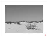 dune skyline