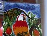 la guacamaya en el mango