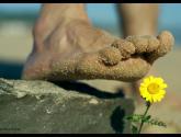playa de bolonia ( cádiz) andalucía