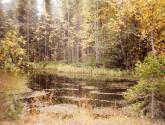 lac de cygne