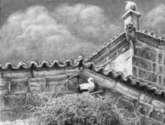 cigüeña blanca en nido