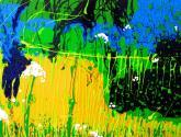 fotograma de un dia azul y negro en el estanque de flores blancas(fotograma d'1 dia blau i negre a l