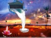 agua sobre  el  desierto