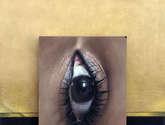 ojo vertical 1