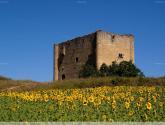 torre de bonifaz en burgos
