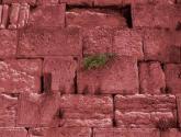 wailing wall 4
