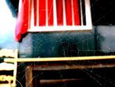 el juego de la araña