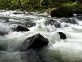 río en primavera ii