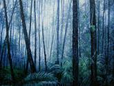 Bosque azul