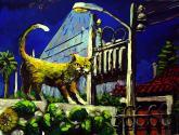 pumix, el gato colorin