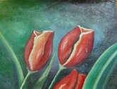 tulipanes en rojo 2