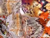 paisaje interior (serie ecología personal)