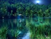 ninfa  del  lago barbazan
