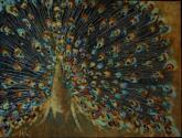 venetian peacock