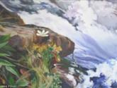 primavera en el río aspe