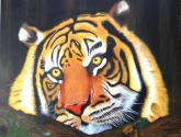 tigre paciente