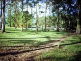 parque sabana