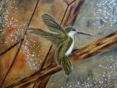 un colibri en el taller ii, en movimiento...