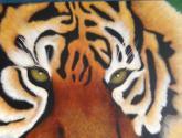 tigre soñoliento