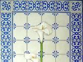 azulejos con alcatraces