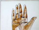 mano. estudio palma