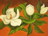 magnólias blancas