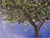 ejercicio de pintura: limonero.