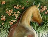 mujer caballo de espaldas