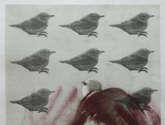 aún con pájaros en la cabeza