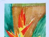 heliconia amarilla
