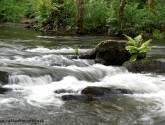 agua en movimiento v