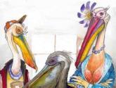 pelicanos 2
