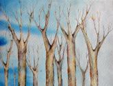 Bosque sobre azul ii
