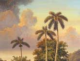 añoranza de palmeras