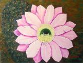 flor de cactus óleo sobre lienzo