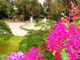 Vista del Parque Doramas Fotografía
