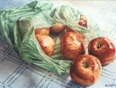 p.p. (plàstic i pomes)