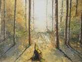 a contraluz en el bosque