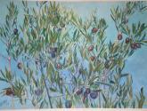 olivo (fragmento)