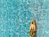 piscina 1 pool
