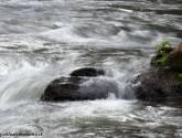 agua en movimiento iii