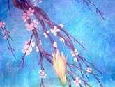 la flor naciente