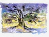 árbol en montseny (1)