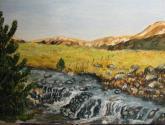 caida del rio agrio