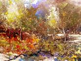 otoño en mallorca (costitx)