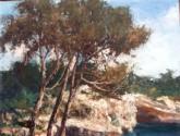 los pinos y el mar
