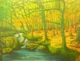 bosque del arroyo