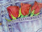 jeans & roses